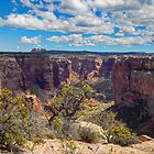 USA. Arizona. Canyon de Chelly National Monument. View. by vadim19