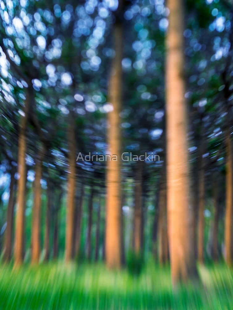 ~ the blue confetti forest ~ by Adriana Glackin