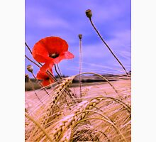 Barley with Poppies Unisex T-Shirt