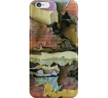 endless summer iPhone Case/Skin