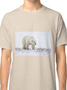 Polar Bear On The Prowl. Churchill, Canada Classic T-Shirt