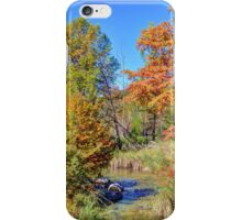 Texas Hill Country Autumn iPhone Case/Skin