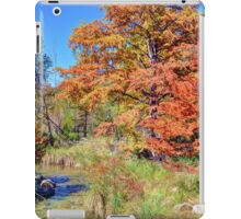 Texas Hill Country Autumn iPad Case/Skin