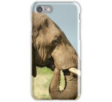 THE AFRICAN ELEPHANT IN PROFILE – Loxodonta Africana - AFRIKA OLIFANT iPhone Case/Skin