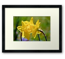 Do You Want To Know A Secret Framed Print