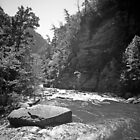 Tallulah River Gorge by Bill Wetmore
