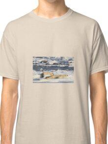 Polar Bear Mother & Cub Grooming Enthusiastically  Classic T-Shirt
