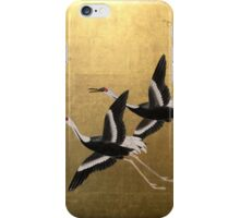 Birds on Gold Screen iPhone Case/Skin