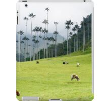 Cows grazing in the green meadows at the Cocora valley iPad Case/Skin