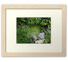 The Pond at 615 Green Framed Print