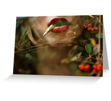 Bullets and Berries  Greeting Card
