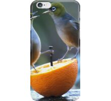 Silver Eyes.......Now ladies, no squabbling......! iPhone Case/Skin