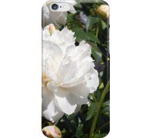 White Peonies iPhone Case/Skin
