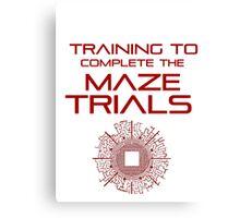 Training - Maze Trials Canvas Print