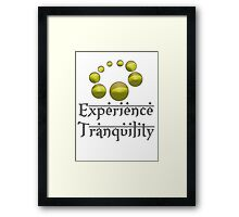 Experience Tranquility Framed Print