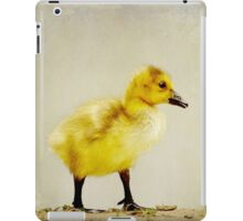His journey begins iPad Case/Skin