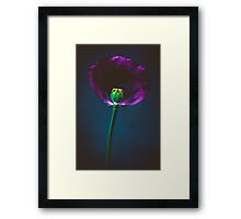 Forces of nature and superheroes Framed Print