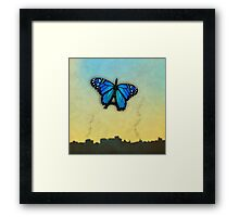 Paris' butterfly Framed Print