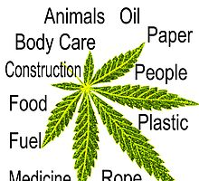 Uses Of Hemp by Tarnya  Burke