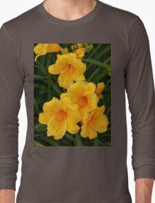 Blossoms  Long Sleeve T-Shirt