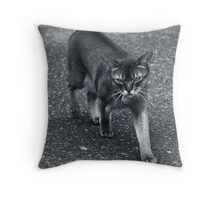 Cat out the window Throw Pillow