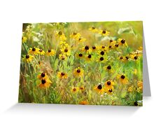 Black Eyed Susans Painting Greeting Card