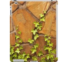 Interesting Imagery That Intrigues A Photographer ©  iPad Case/Skin