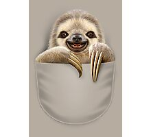 POCKET SLOTH Photographic Print