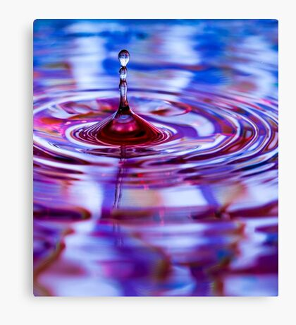 ~ one float ~ Canvas Print
