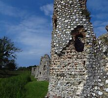 Crumbling Towers, Baconsthorpe Castle by wiggyofipswich