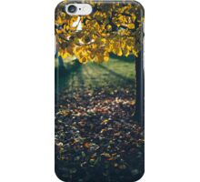 Afternoon glow iPhone Case/Skin