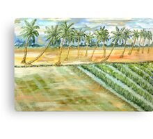 Monsoon at Field View - Kerala Canvas Print