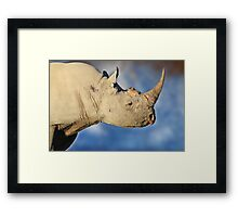 Black Rhino - Rare and Endangered Beauty from Wild Africa Framed Print