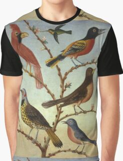 Thomas Coke Ruckle - Birds. Bird painting: cute fowl, fly, wings, lucky, pets, wild life, animal, birds, little small, bird, nature Graphic T-Shirt