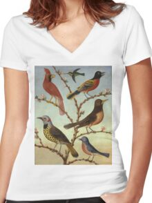 Thomas Coke Ruckle - Birds. Bird painting: cute fowl, fly, wings, lucky, pets, wild life, animal, birds, little small, bird, nature Women's Fitted V-Neck T-Shirt