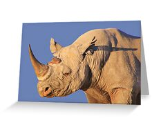 Black Rhino - Rare and Endangered Power from Wild Africa Greeting Card