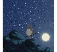 Studio Ghibli - My Neighbor Totoro Photographic Print
