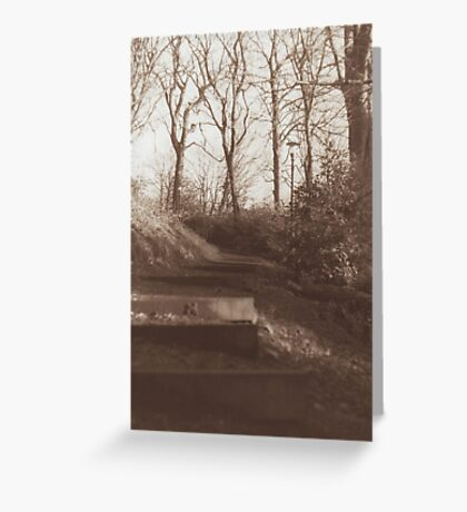 Into the Woods Greeting Card