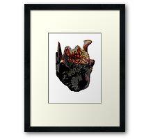 FEAR SQUIRRELS Framed Print