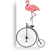 Flamingo Old Fashioned Bicycle Penny Farthing Canvas Print