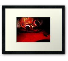 Blood Red River Framed Print