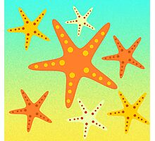 Starfish at the beach  Photographic Print