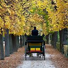 Fiacre In Chestnut Alley by Mythos57