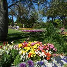 Queens Park, Toowoomba by PhotosByG