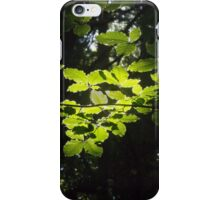 Bersham Light iPhone Case/Skin