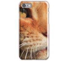Close-up of ginger cat iPhone Case/Skin