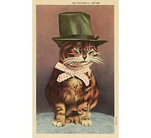 Unknown - Cat Wearing A Hat. Cat portrait: cat, whiskered, striped, important, clever, proud, fat, fashionable, stylish, hat, bow Photographic Print
