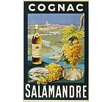 Unknown - Cognac Salamandre Poster. Still life with fruits and vegetables: alcohol, bottle, wineglass, pleasure, fruit, grapes, meeting, output, party,  cafe,  restaurant Photographic Print
