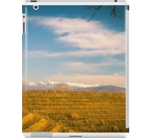 Vineyard in late winter iPad Case/Skin