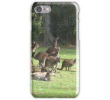 Group of Kangaroos iPhone Case/Skin